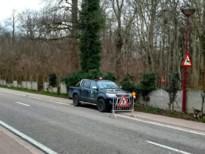 Natuur en Bos kapt bomen op kasteeldomein