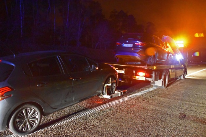 Verschillende auto's beschadigd op Noord-Zuid door overstekend everzwijn