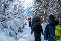 De Heikneuters wandelen op sneeuwtapijt in Oostenrijk
