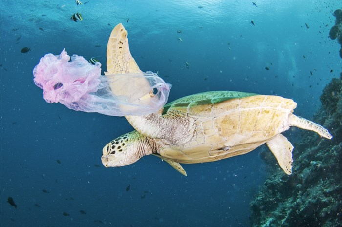 Maleisië op nummer 1 in Azië voor vervuiling met plastic afval