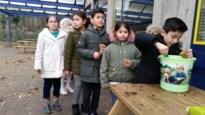 Dikketruiendag in de Europaschool
