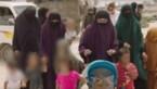 Minister vraagt IS-moeders repatriëring kinderen toe te laten