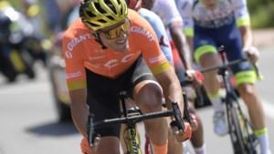 Voorjaarstoppers én rondemannen bijna allemaal paraat in Ronde van Algarve