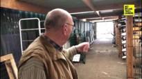"""Dieven breken in via zijgevel Hobbyfarm in Heusden-Zolder: """"Dit is al de vierde keer"""""""