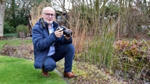 Hobbyfotograaf Godfried (68) krijgt uiterst zeldzame vlieg voor zijn lens