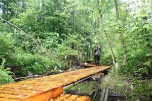 """Sp.a en Groen hekelen afvoeren subsidie aankoop natuurgebieden: """"Dwaas gedrag"""""""