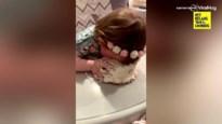 Gulzige baby wil haar verjaardagstaart niet delen
