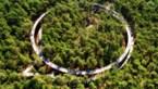 GOESTING. Onze fietstocht van de week: fietsen door de toppen van de bomen