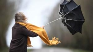 Hevige wind verwacht: 1722 geactiveerd