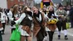 Bekijk hier de foto's van de carnavalsstoet in Sint-Huibrechts-Lille