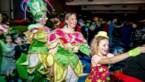 Bekijk hier de foto's van het carnavalsfeest in Hamont