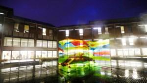 Vlaams Belang wil komaf maken met verplichte kunst in overheidsgebouwen