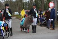 Bekijk hier de foto's van de carnavalsstoet in Overpelt