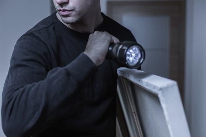 Politie maakt geautomatiseerde databank over kunstdiefstallen