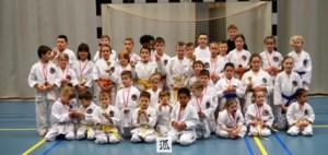 Druk wedstrijdweekend voor karateclub Shingitai Hoeselt
