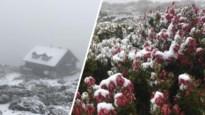 Weer nu finaal van slag in Australië? Zomer en toch dik sneeuwtapijt