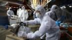 """Zeven vragen over het coronavirus:""""Kinderen moeten niet bang zijn, hun grootouders wel"""""""