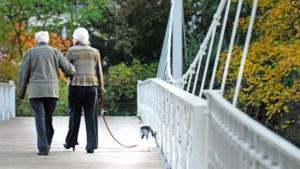 Waarom minder pensioensparen soms meer opbrengt