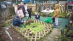 Groen boos over vermindering toelage klimaatprojecten op school