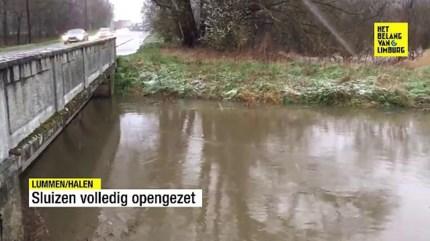 Limburgse wachtbekkens lopen onder door overvloedige regen: geen huizen bedreigd