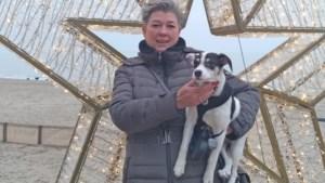 Sabine (51) breekt beide armen bij val, opgeschrikte puppy loopt weg