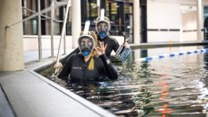 DOEN: snorkelen tussen tropische vissen in Beringen