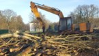 Burgemeester Kortessem wil extra mankracht om illegale bomenkap tegen te gaan