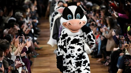 Modellen als koe op catwalk