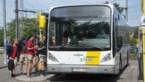 De Lijn stopt met bus naar Bobbejaanland, gemeente Kasterlee vraagt respijt