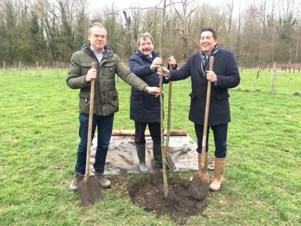 Eregouverneur Reynders komt zelf zijn geschonken klimaatboom planten