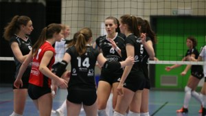 Kruis over alle volleybalcompetities in België