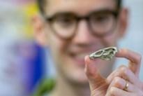 66 miljoen jaar oude Maastrichtse 'wonderkip' zet wetenschap op stelten