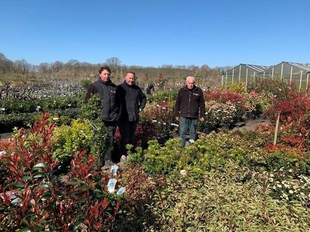 """Pelts tuincentrum over verkoop van planten door Aveve: """"Oneerlijke concurrentie"""""""