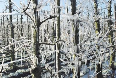 Volgende week stevige vriestemperaturen en winterse buien
