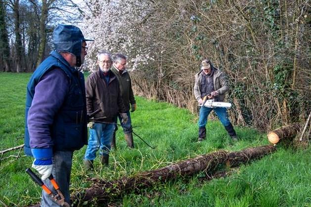Vrijwilligers Natuurpunt starten eerste beheerwerken Demervallei