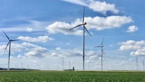 Eindelijk vergunning voor windmolens die al 2,5 jaar draaien