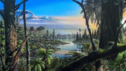 Antarctica was 90 miljoen jaar geleden zo warm dat er een regenwoud was