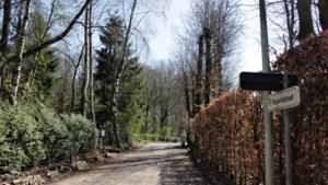 Familiefeestje in Hoeselt levert boete van 2.750 euro op