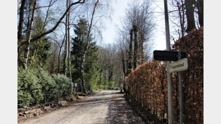 Familiefeestje levert boete van 2.750 euro op in Schabos