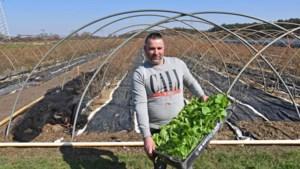 """Boer Geert opent zelfoogsttuin: """"Mensen willen meer contact met natuur"""""""