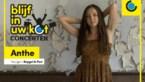 Bilzense singer-songwriter laat ons wegdromen met intiem Blijf in uw kot-concert