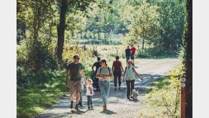 Hondenlosloopzone toegevoegd aan Herkenrodebossen