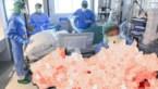 Het coronavirus in cijfers: aantal besmettingen, overlijdens en ziekenhuisopnames