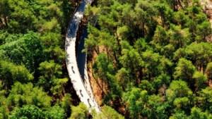 Code oranje in Limburgse bossen wegens brandgevaar