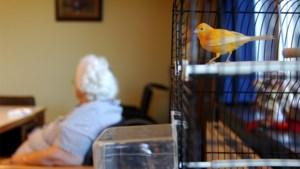 Duitse honderdjarige ontsnapt uit seniorenwoning verjaardag dochter te vieren