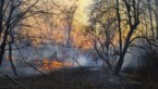 Oekraïense brandweer boekt vooruitgang bij blussen bosbrand rond Tsjernobyl