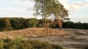 Vijvers en duinen in natuurgebied De Maten na drie jaar in ere hersteld