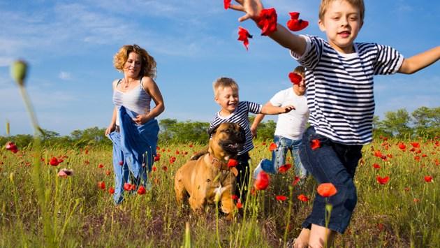 Wandel je gezond: dáárom is wandelen goed voor je