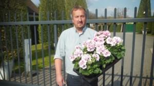 Plantencentrum schenkt 3600  bloemen aan Ter Heide en ZOL
