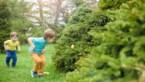 Van digitale eitjesraap tot dagje Efteling: onze tien thuistips